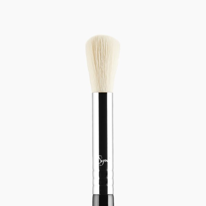 F06 Powder Sweep™ Brush