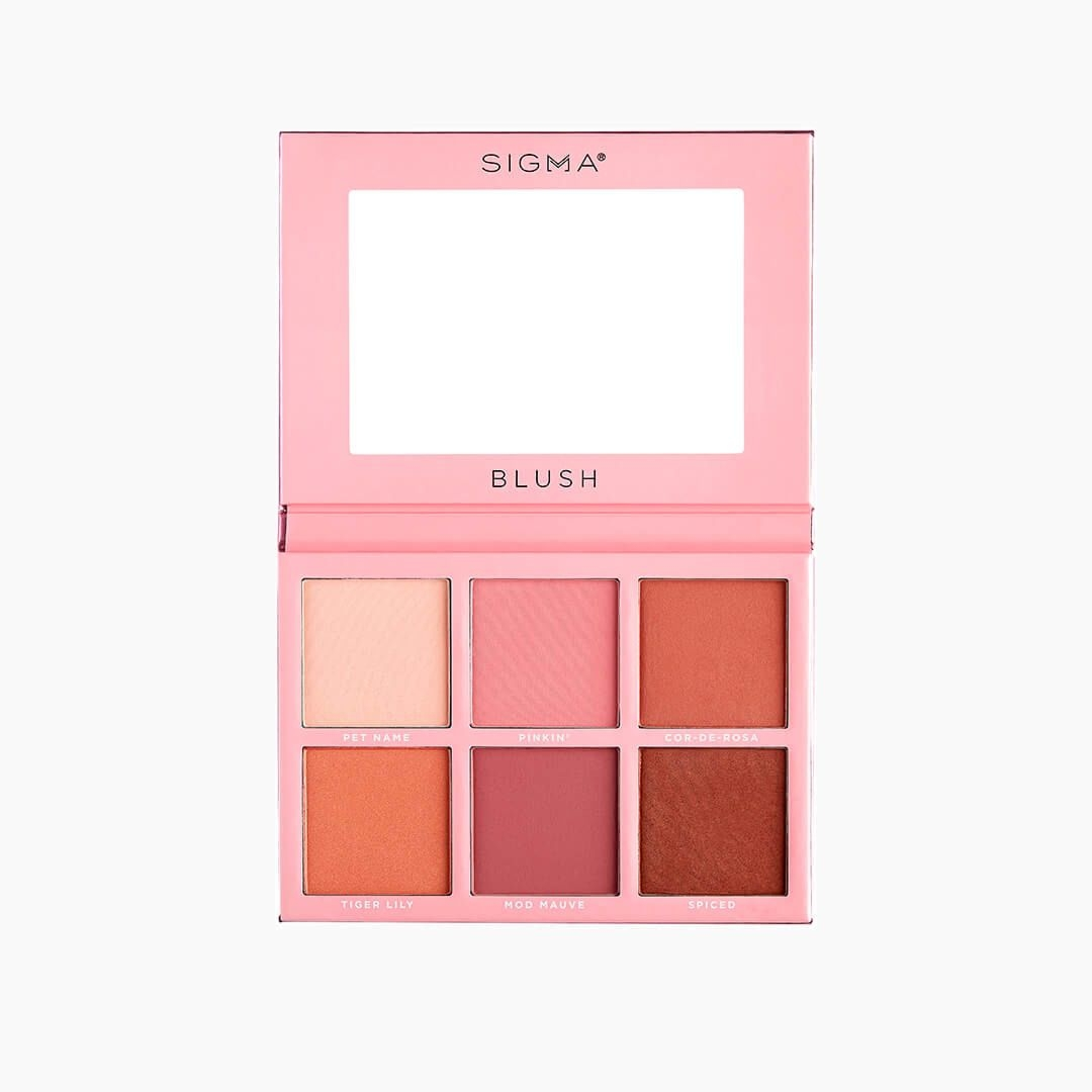 Blush & Brighten Face Palette by the vintage cosmetic company #6