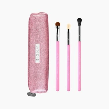 Passionately Pink Brush Set