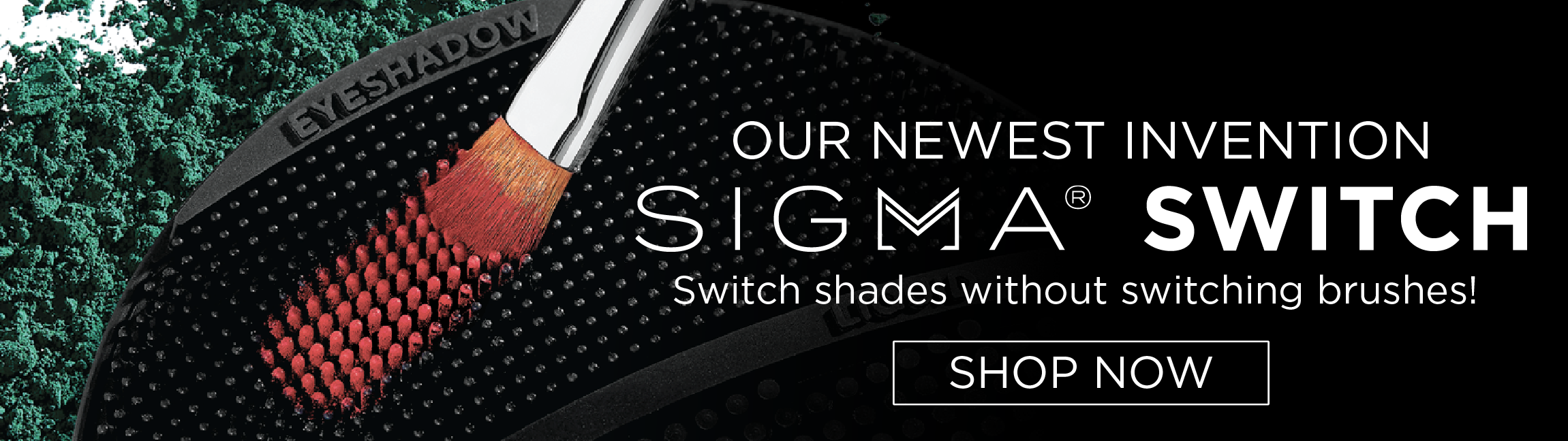 Our Newest Invention | Sigma® Switch | Switch Shades Without Switching Brushes!