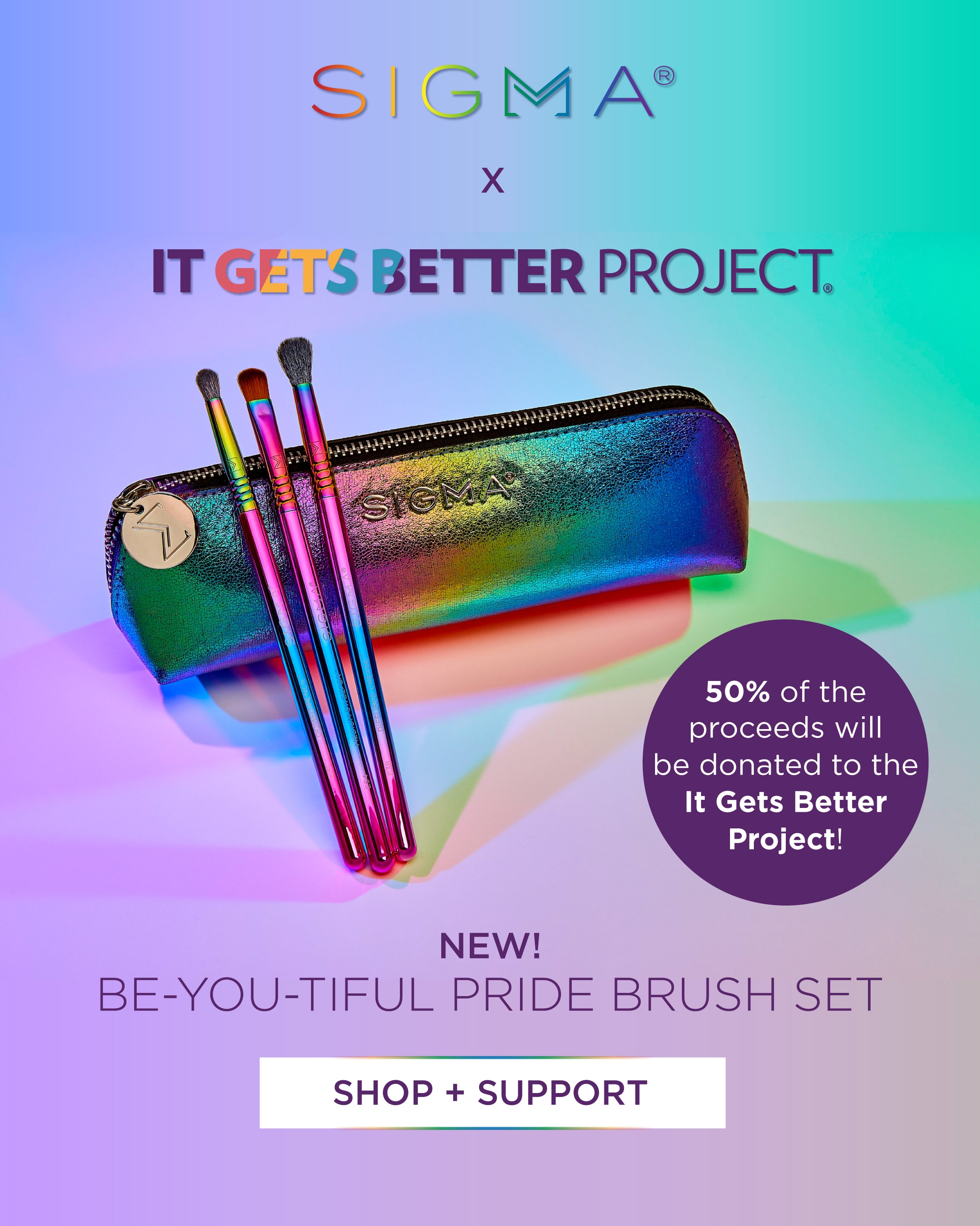SIGMA X IT GETS BETTER PROJECT