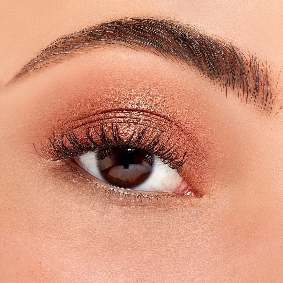 A closeup of a woman's eye with Sigma's Iconic Eyeshadow applied