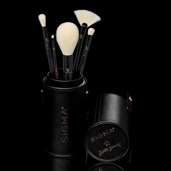 Roxstar Favorites Brush Set
