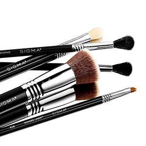 Vegan Brushes Clean Beauty Products