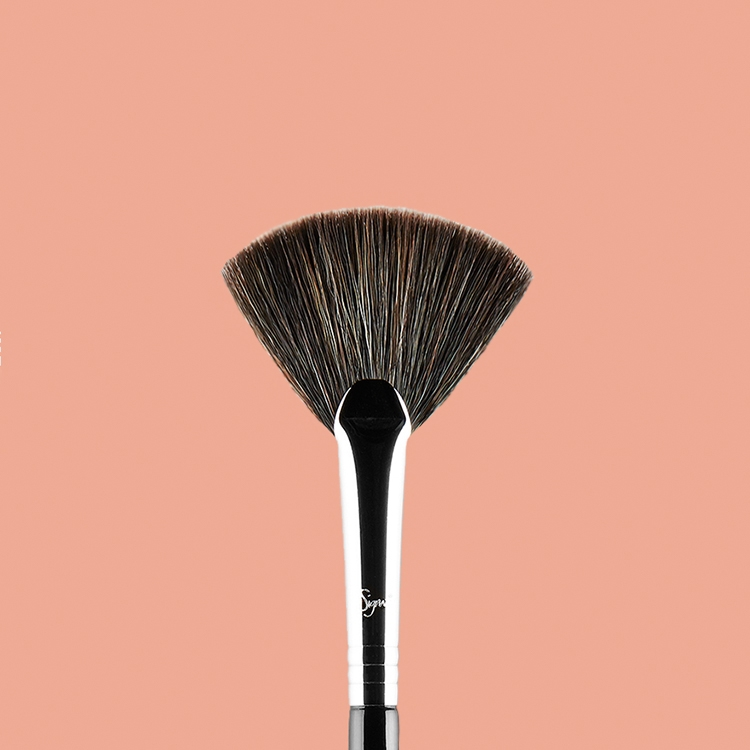 F42 Strobing Fan Brush