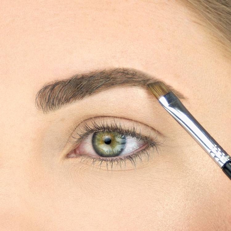 Model using E75 Angled Brow Brush
